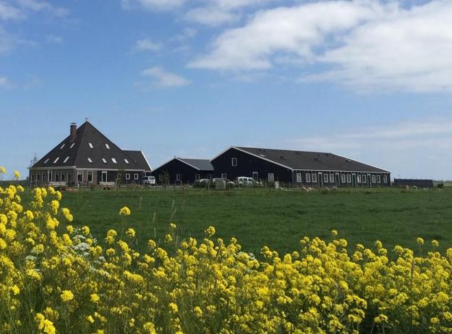 Zorgboerderij Ons verlangen Amsterdam Zunderdorp